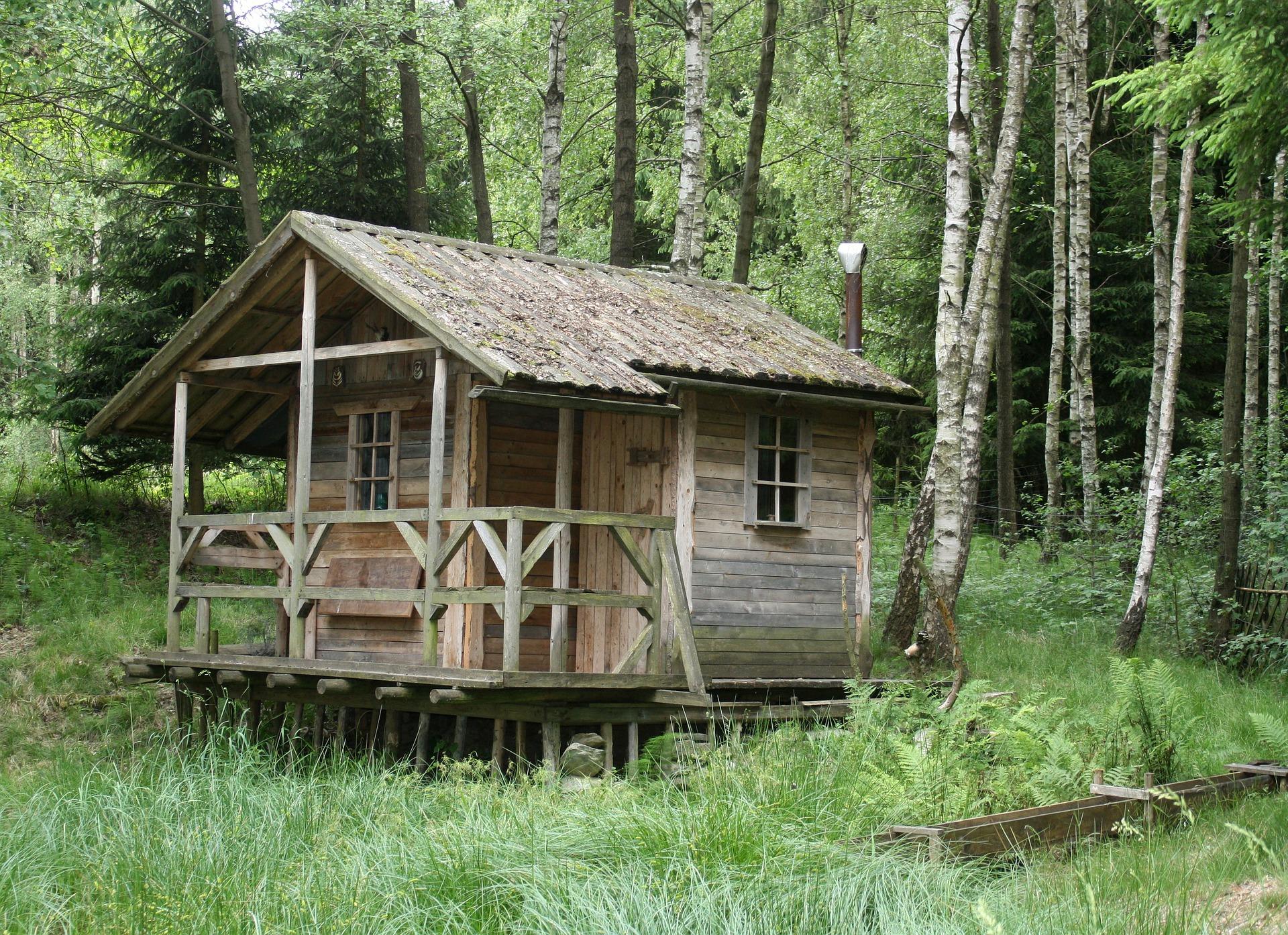 mobilní dům v lese