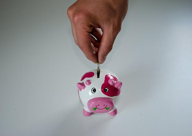 pokladnička kravička.jpg