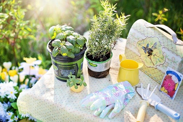 zahradní nářadí.jpg